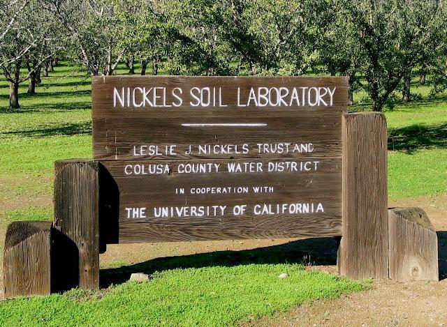NSL sign 2