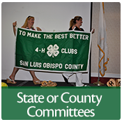 Help	shape 4-H in California!